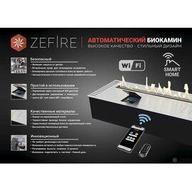 Биокамин автоматический ZeFire Automatic 900 с ДУ